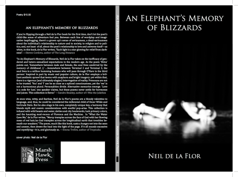 An Elephant's Memory of Blizzards